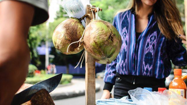 世界,妊娠中,ココナッツ