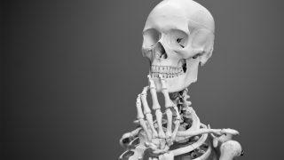 産後の骨量